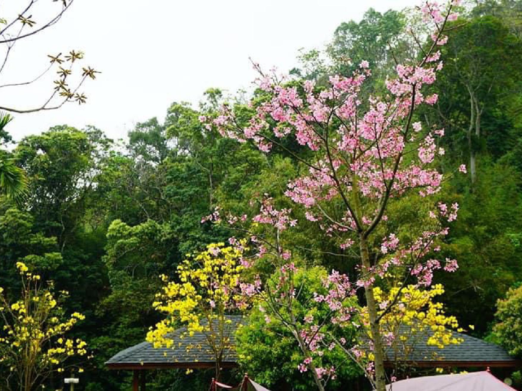 風山雅筑_200513_0002135-04